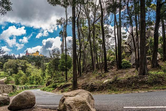 Sintra-Cascais Nature Reserve